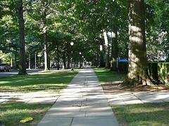 Hillhouse Avenue