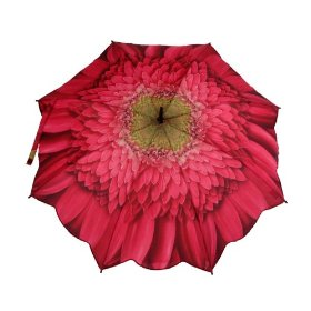 My Umbrella