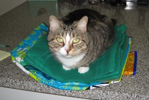 Tessie on Grocery Bags